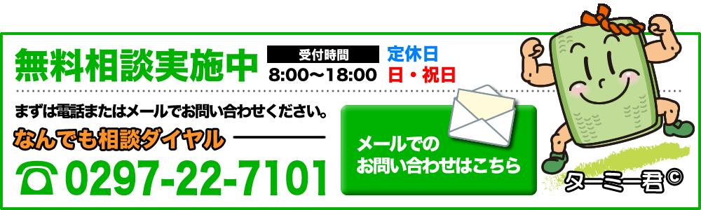 contact-bn